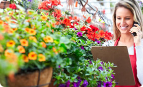 pedido-flor-nacional-flores-torrecillas