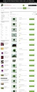 tienda-florestorrecillas-com-13-verdes