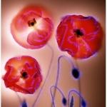 robert-buelteman-flores-21